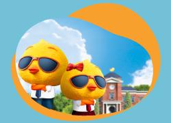 自由鳥X恒生信用卡 學生計劃上台優惠