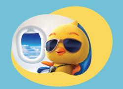 自由鳥遨遊SIM Visa信用卡優惠